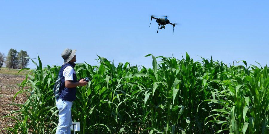El INICTEL-UNI presentará resultados de proyectos de investigación orientados al incremento de la producción agrícola y la conservación del medio ambiente