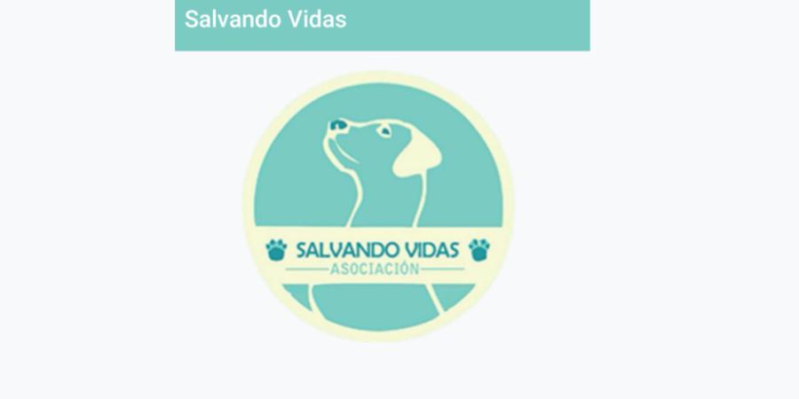 Estudiantes universitarias crean aplicativo móvil para denunciar el maltrato animal